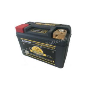 Poweroad LiFePO4 280CCA Battery
